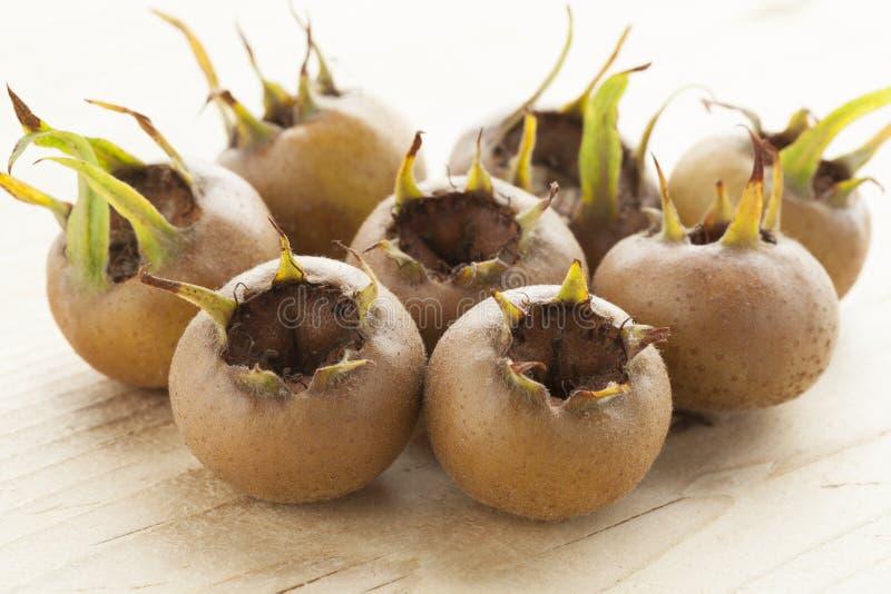 Haut étroit de nèfles fraîches photo stock