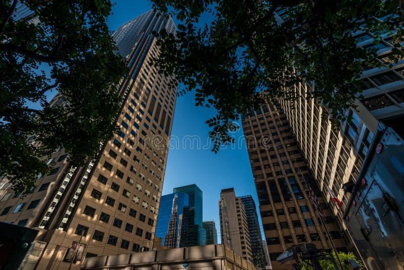 Haut bâtiment de San Francisco images libres de droits