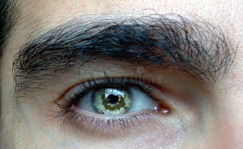 Haut proche d'oeil image stock