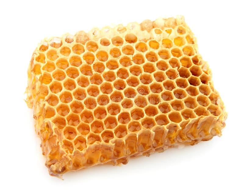 Haut proche de nid d'abeilles photo stock