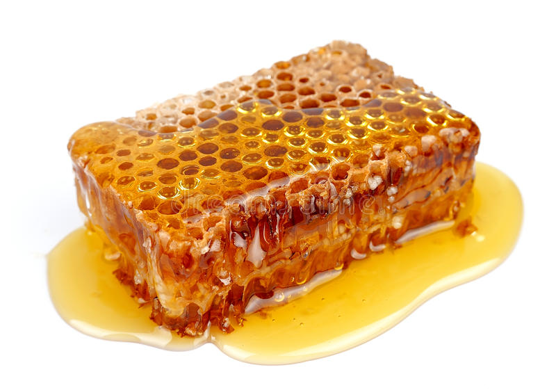 Haut proche de nid d'abeilles image stock