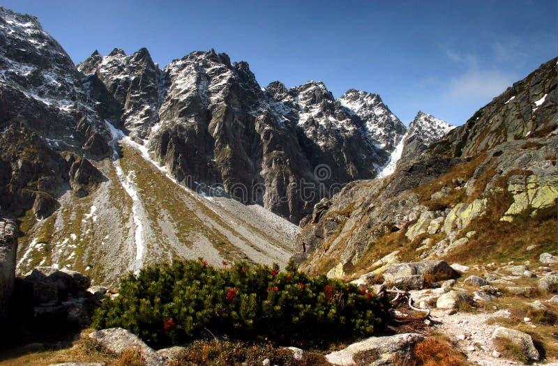Haut Tatra Image stock