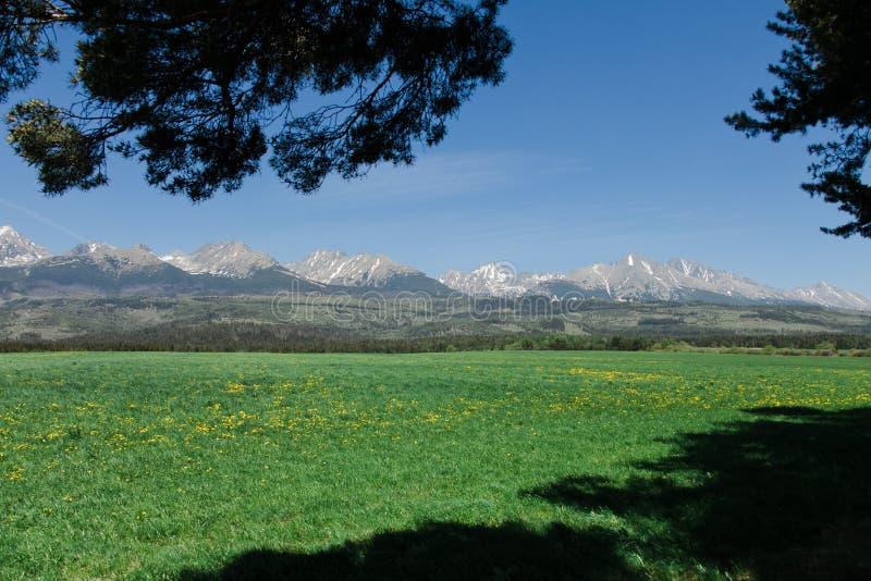 Haut Tatras avec la neige sur la montagne - Slovaquie photos stock