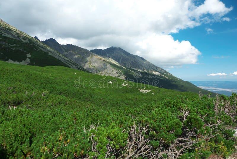 Haut Tatras - paysage photos stock