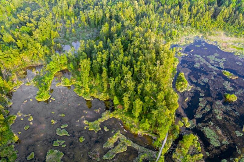 Haute aérienne de photo au-dessus des marécages parc régional, Rosedale, la Colombie-Britannique, Canada de lac Cheam photographie stock libre de droits