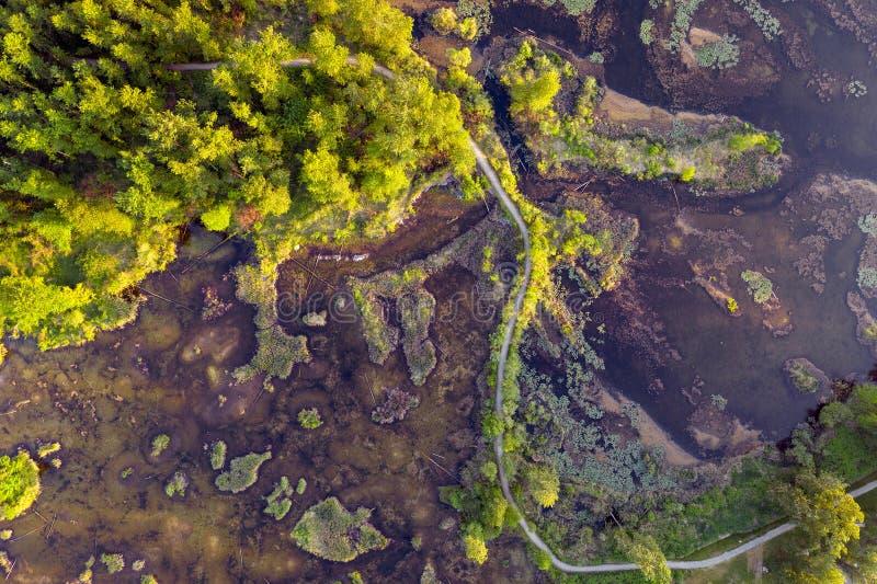 Haute aérienne de photo au-dessus des marécages parc régional, Rosedale, la Colombie-Britannique, Canada de lac Cheam photo libre de droits