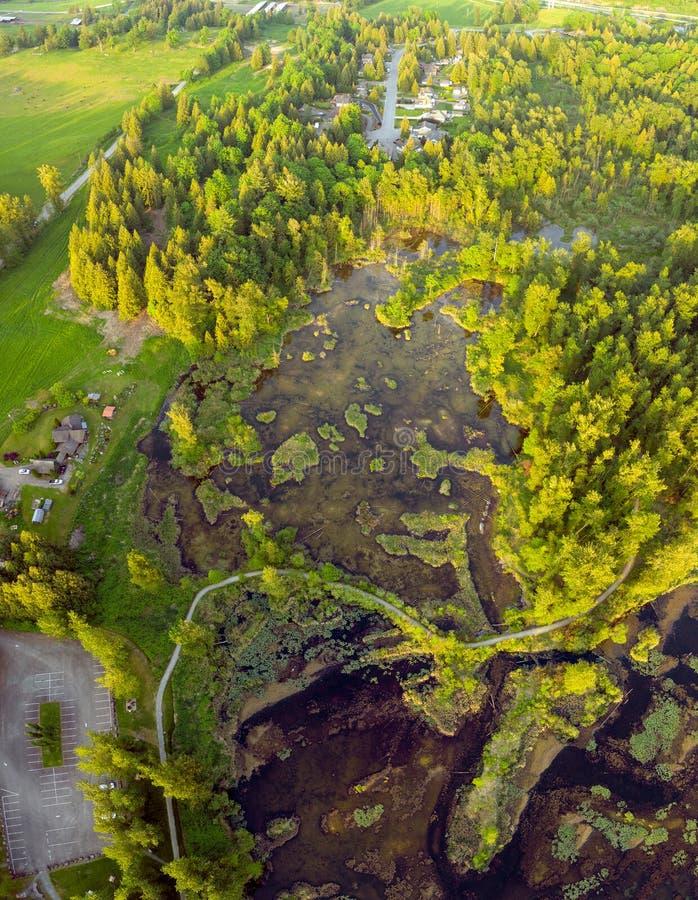 Haute aérienne de photo au-dessus des marécages parc régional, Rosedale, la Colombie-Britannique, Canada de lac Cheam image stock