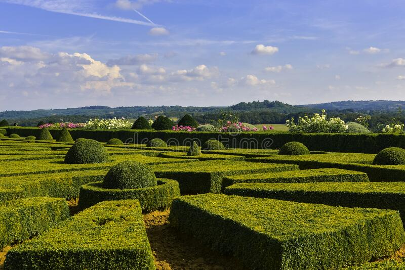 Living geometric mosaic. Hautefort, Corrèze, French - August 28, 2019 : Image taken close to the ground showing boxwood shrubs pruned into different geometric royalty free stock photos
