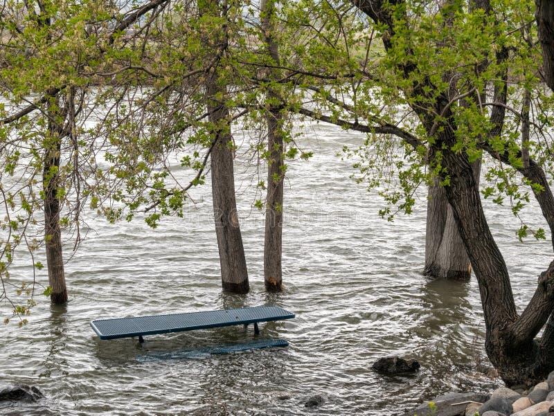 Hautes eaux, la rivière Truckee images libres de droits
