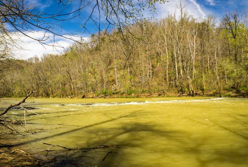 Hautes eaux sur la rivière -2 de Roanoke images stock
