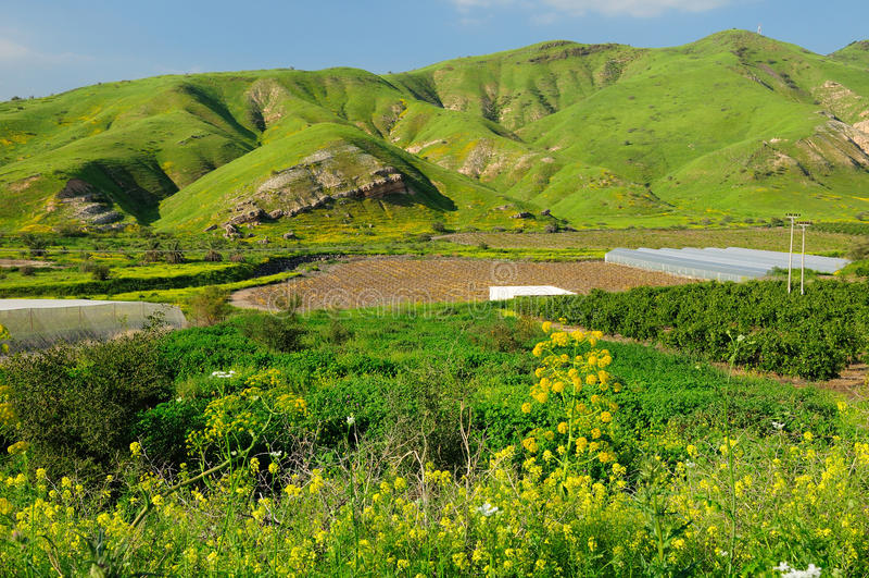Hauteurs du Golan. photos libres de droits