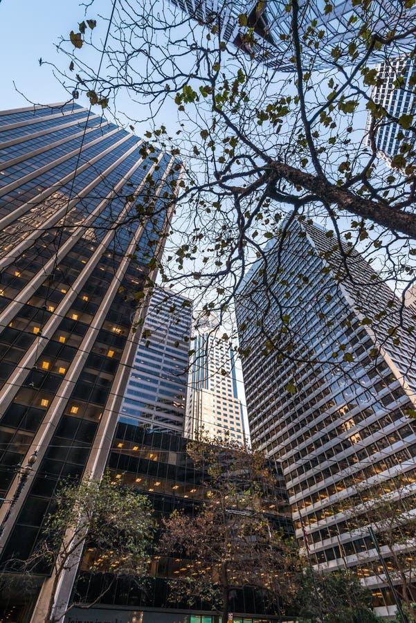 Hauts bâtiments de San Francisco photo stock