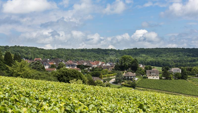 Hautvillers Champagne fotos de stock