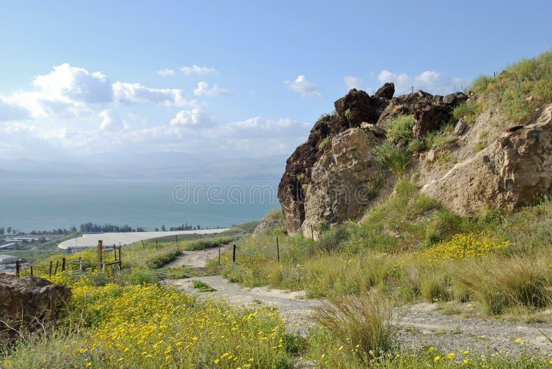 Hav av Galilee, Golan Heights, Israel arkivbilder
