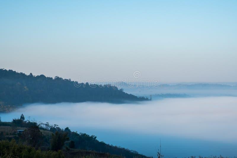Hav av mist i morgonen på Khao Kho, Phetchabun landskap, nordliga Thailand arkivbilder