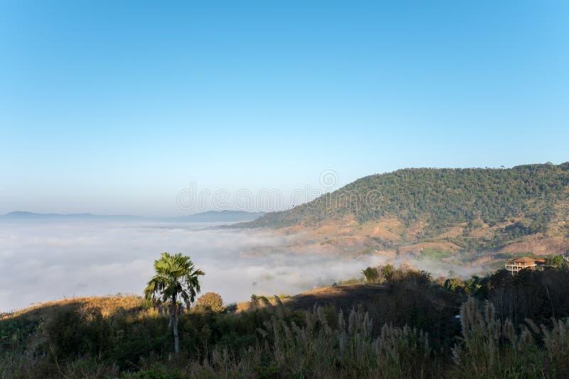 Hav av mist i morgonen på Khao Kho, Phetchabun landskap, nordliga Thailand royaltyfri bild