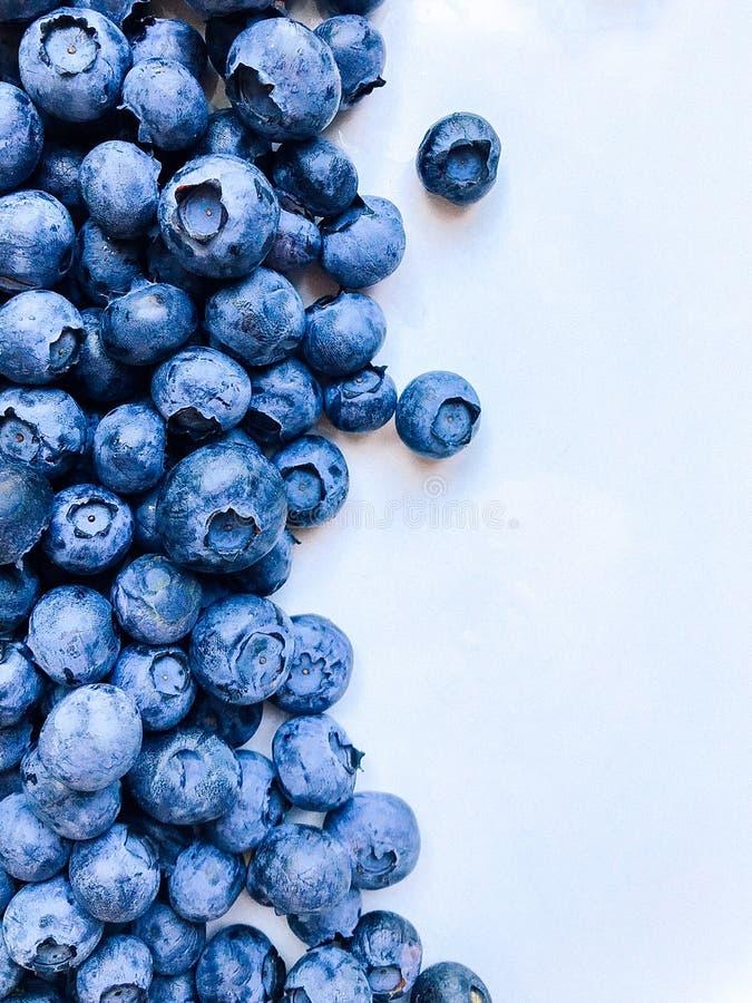 hav f?r close f?r bakgrundsb?rbuckthorn upp Nya bärblåbär på en vit bakgrund Begrepp av sunt och att banta mat royaltyfri foto
