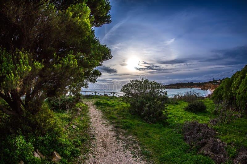 Hav, himmel, sol och träd nära stranden i Portimao, Portugal royaltyfria bilder