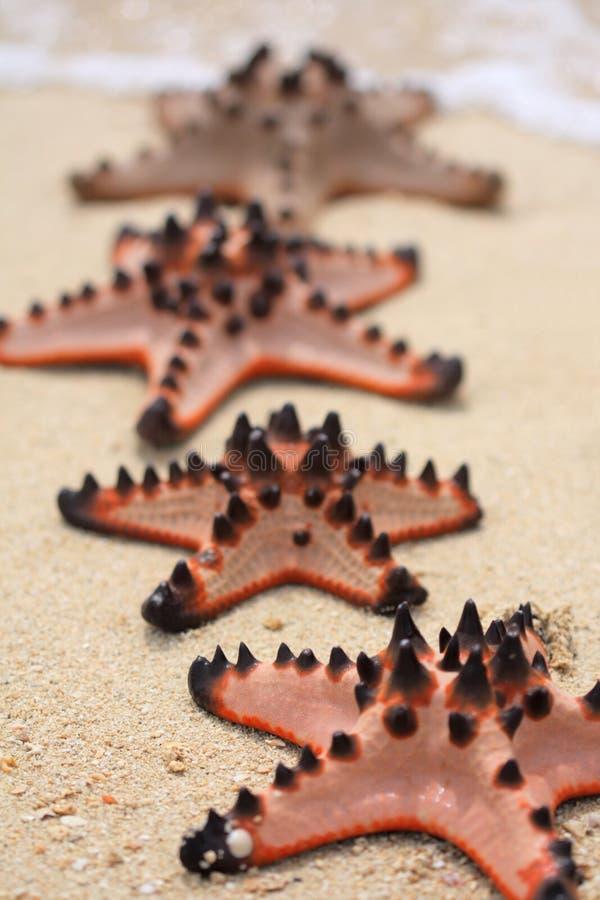 hav som är starway till royaltyfri foto