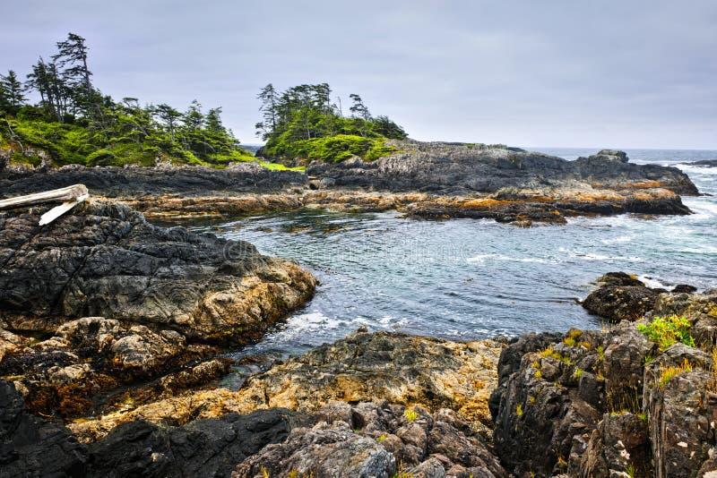 hav Stillahavs- vancouver för Kanada kustö royaltyfri bild