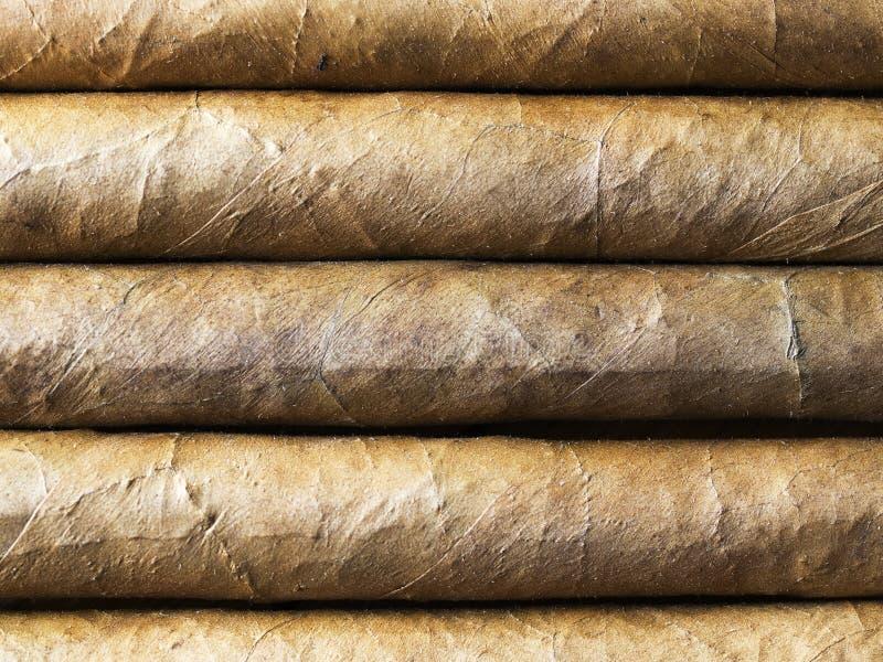 Havana cigars bacground nearest stock photos