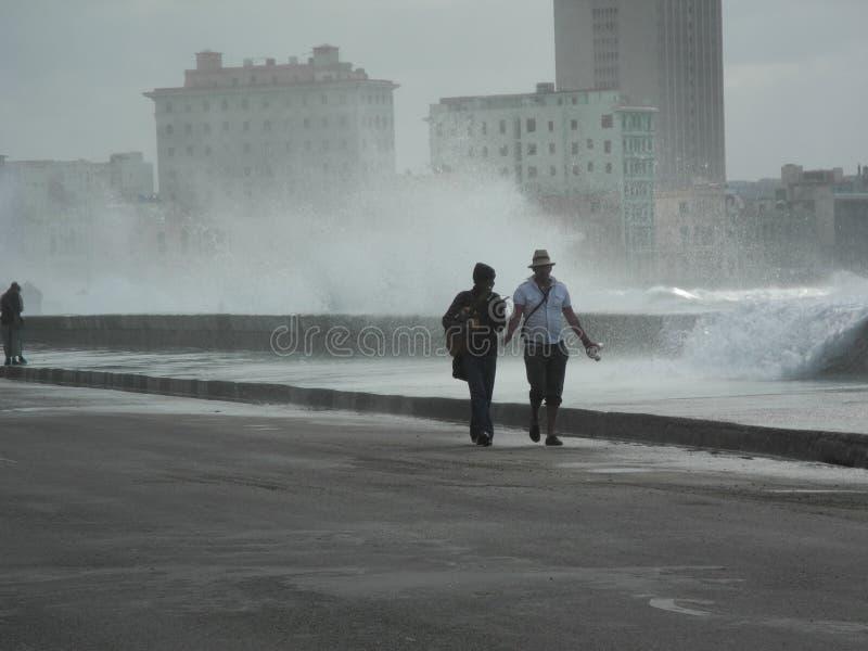 HAVANA-CUBA 免版税库存图片