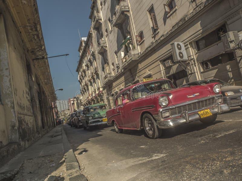 Havana Old Cars royalty free stock photos