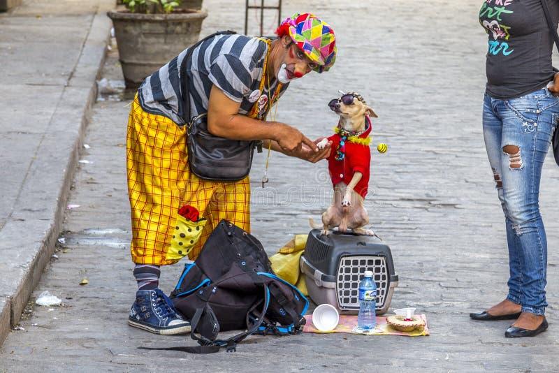 Havana Steet scene-1 stockfotos
