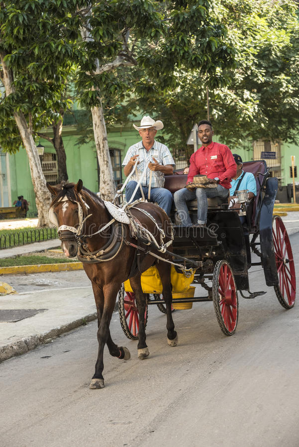 Havannacigarr för hästvagnsritt arkivfoton