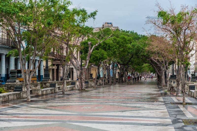 HAVANNACIGARR KUBA - OKTOBER 21, 2017: Gammal stad i havannacigarren och en av den berömda gatan - Paseo del Prado cuba royaltyfri bild