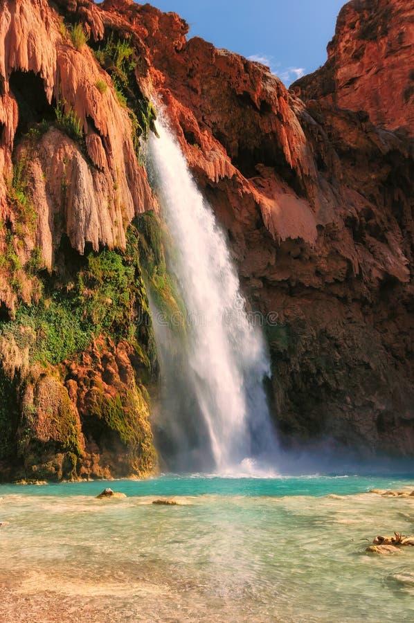 Havasu fällt, Havasu-Schlucht, Supai, Grand Canyon, Arizona stockbild