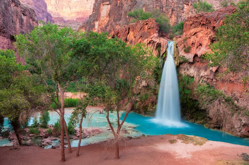 Havasu faller, vattenfall i Grand Canyon, Arizona arkivbild
