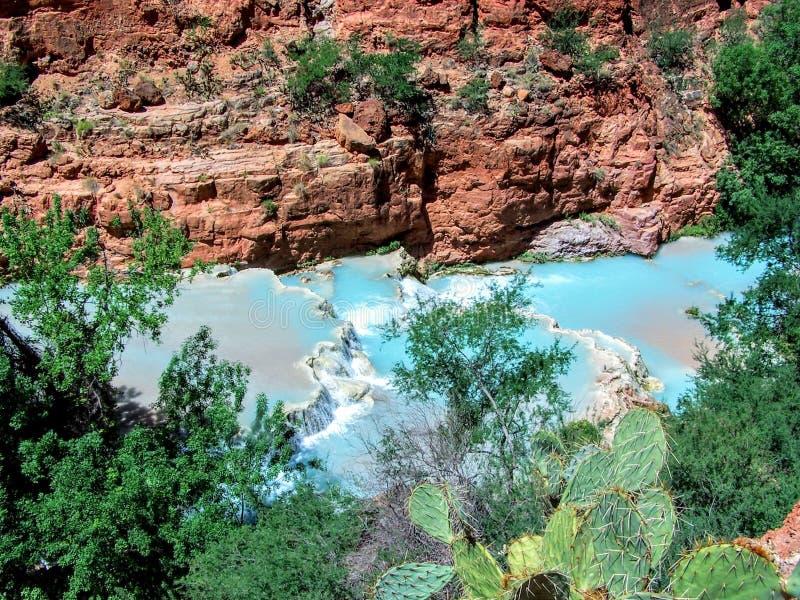 Havasupai tombe, des piscines, l'eau bleue, murs de roche de formation géologique image libre de droits