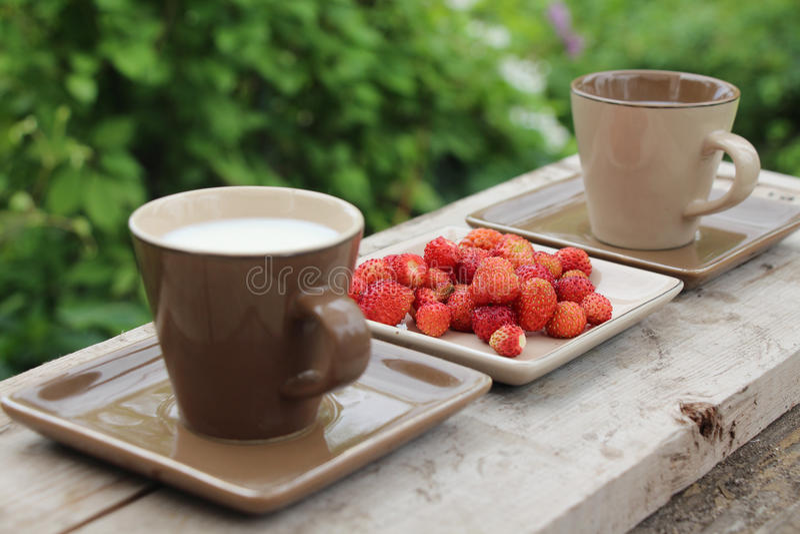 Have breakfast stock image
