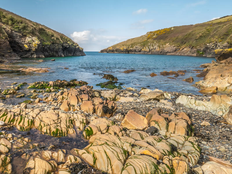 Haven Quin, Cornwall, Engeland royalty-vrije stock foto's