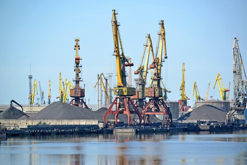 Havenschildersezels bij de steenkoollading De zeehaven van de Kaliningradhandel royalty-vrije stock afbeeldingen