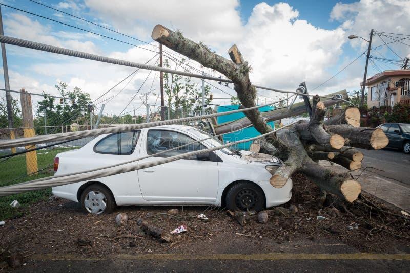 Haveriet av orkanen Maria arkivbild