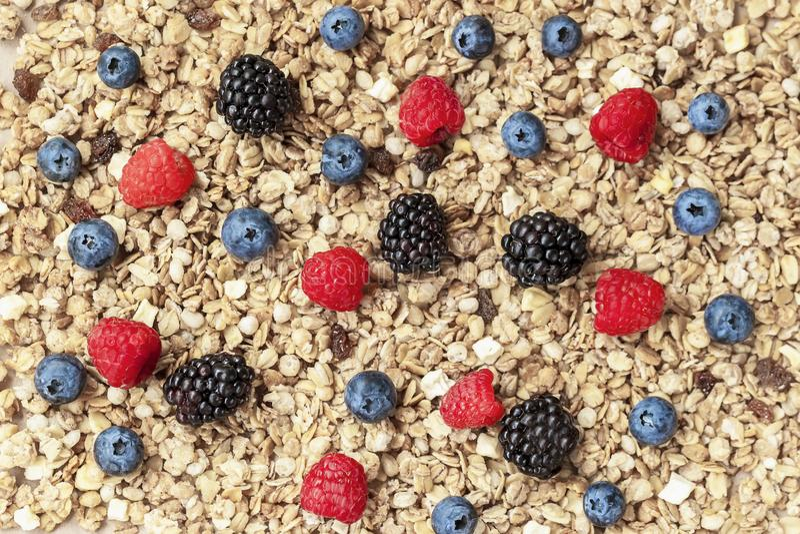 Havervlokken, granola, muesli en bessen Framboos, bosbessen, braambessenclose-up op achtergrond van muesli Gezond royalty-vrije stock afbeelding