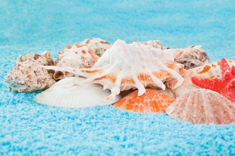 Havet beskjuter closeupen fotografering för bildbyråer