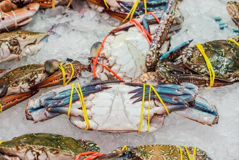Havet fångar krabbor stort format och säljs i supermarket fotografering för bildbyråer