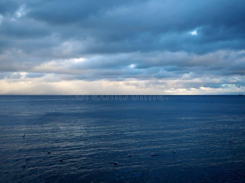 Havet i aftonen royaltyfria bilder