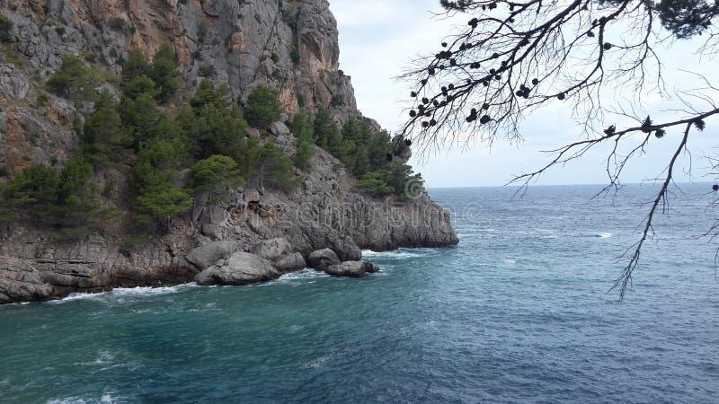 Havet möter land royaltyfri bild