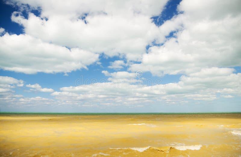 Havet precis efter stormen royaltyfria bilder