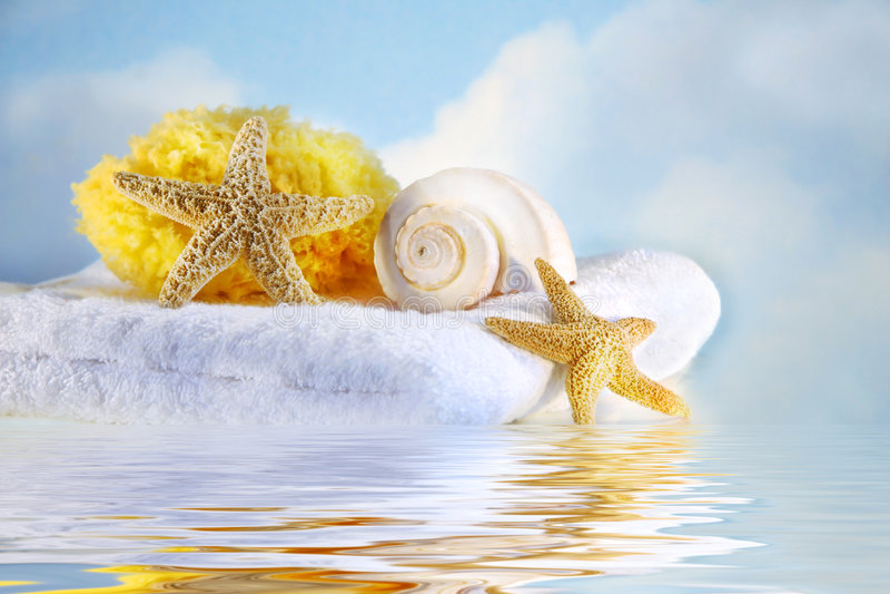 havet shells handduken royaltyfri foto