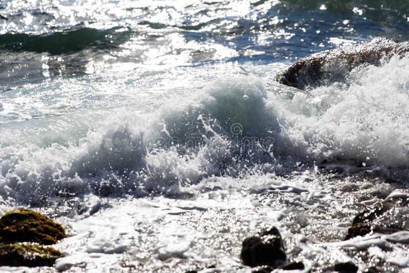 Havet vinkar på sommarstranden arkivfoto
