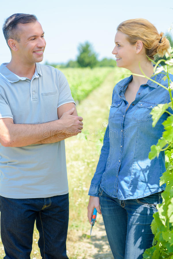 Having conversation in field royalty free stock photo