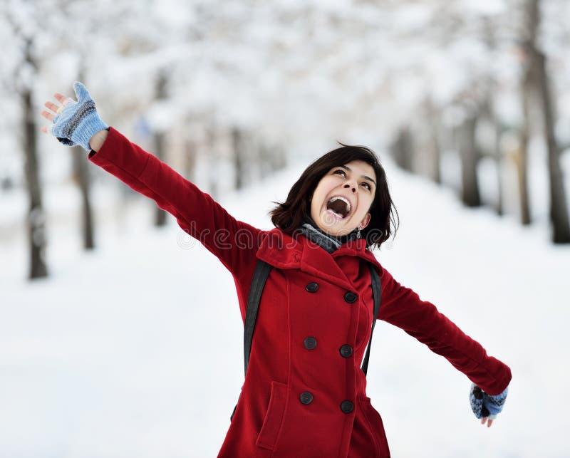 Having fun in winter scene royalty free stock image