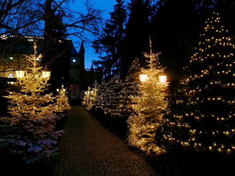 Lighted christmas trees winter passage by night royalty free stock photo