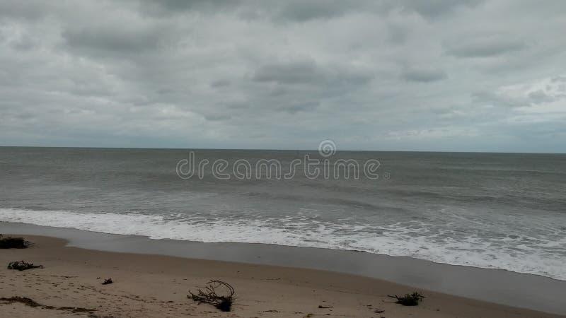 HavlivFlorida väder arkivfoton