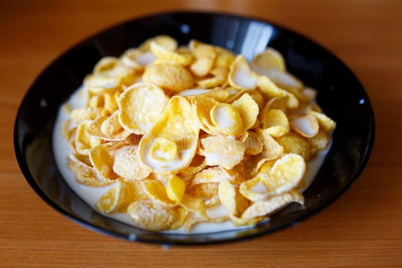 havreflakes mjölkar Sund mat i morgonen fotografering för bildbyråer